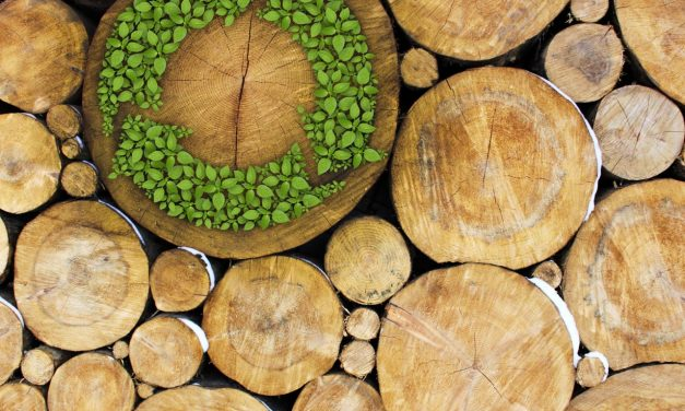 Happy, Healthy, and Green: The Green Building Movement